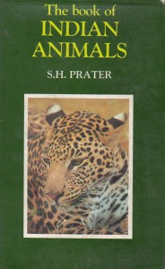 The Book of Indian Animals
