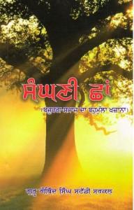 sanghni-chhan